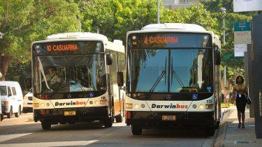 Darwin Buses